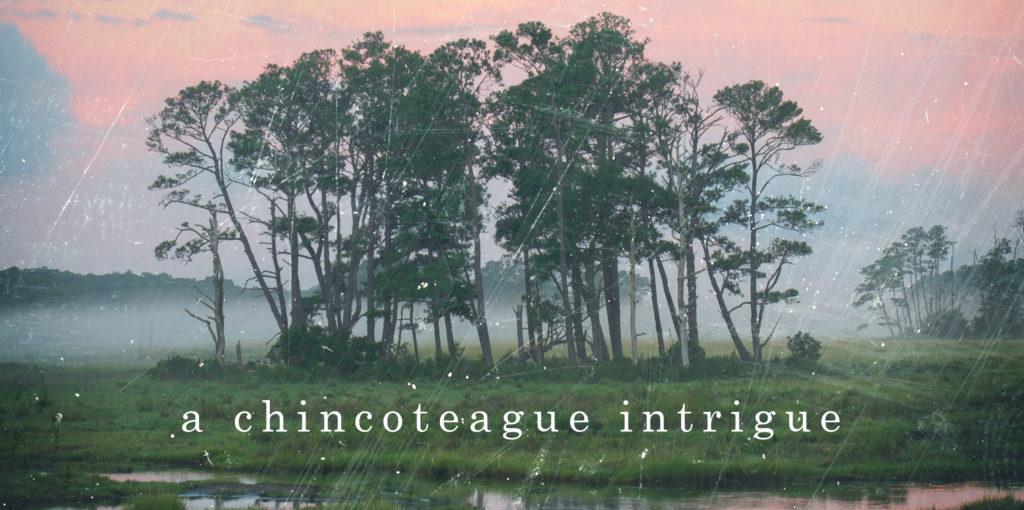 image: a chincoteague intrigue